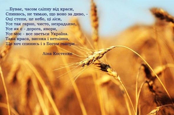 В ближайшее время Украине не будет легко, но она понемногу становится на ноги, - Туск - Цензор.НЕТ 6793